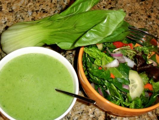 Bok Choy Soup and Salad DSC07285